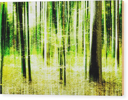 Radiation Forest Wood Print