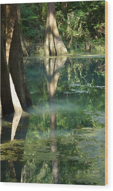 Radium Springs Creek In The Summertime Wood Print