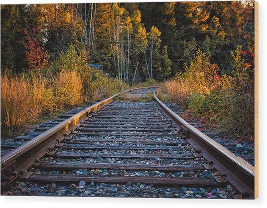 Rails Pondicherry Nwr Wood Print