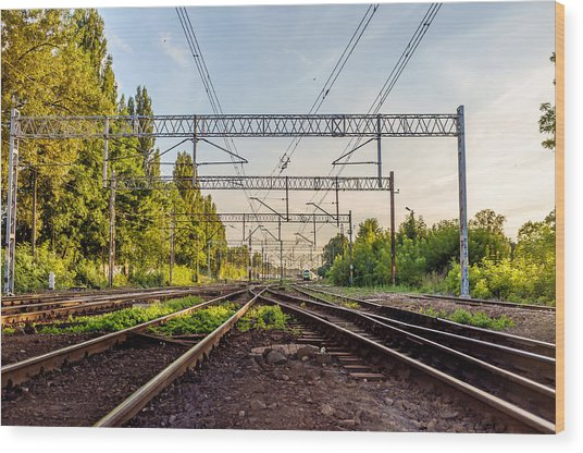 Railway To Nowhere Wood Print