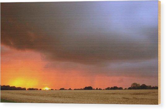 Rain Burst Wood Print by Dave Woodbridge