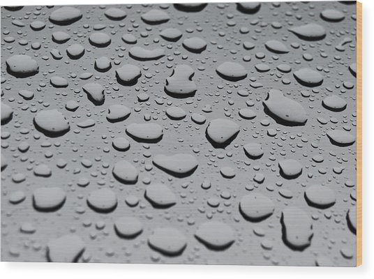 Rain On Sunroof Wood Print
