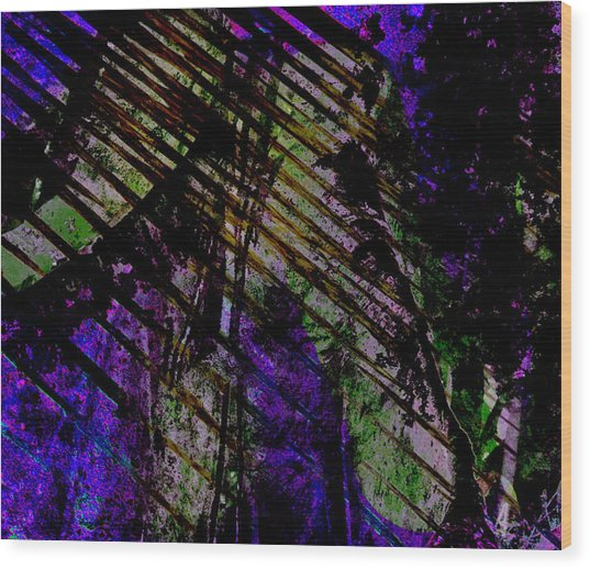 Rain Shadow Wood Print