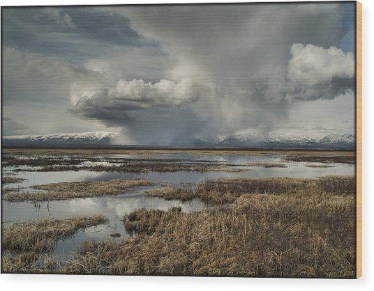 Rain Storm Wood Print