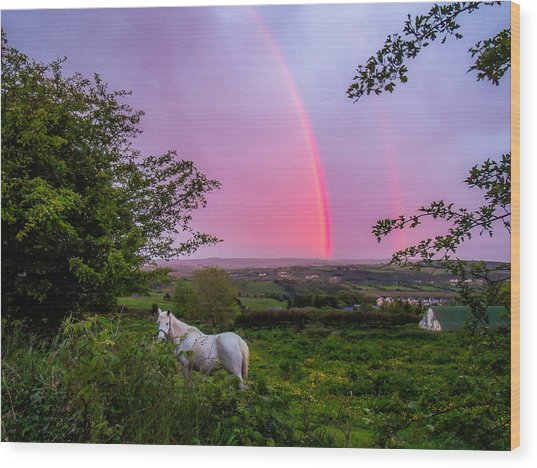 Rainbow At Sunset In County Clare Wood Print