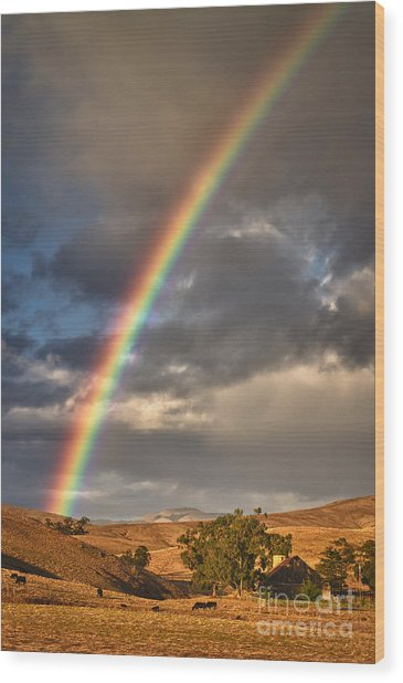 Rainbow Barn Wood Print