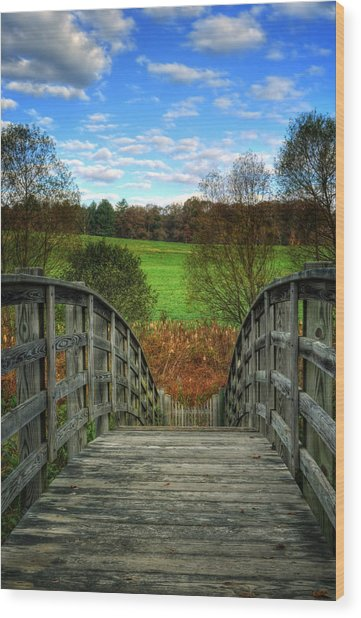 Rainbow Bridge Brasstown Nc Wood Print