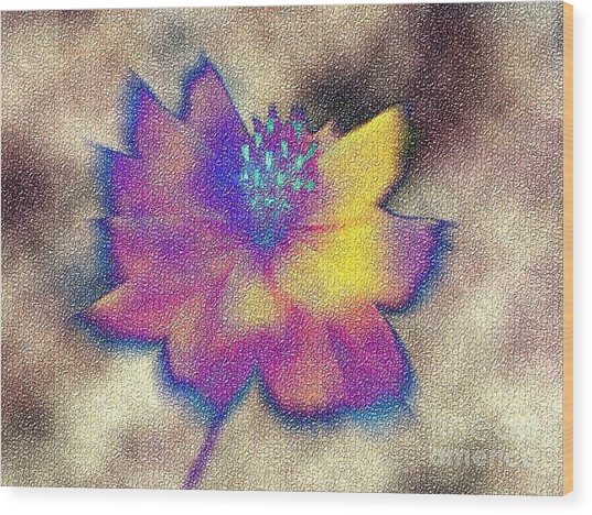 Rainbow Flower Wood Print