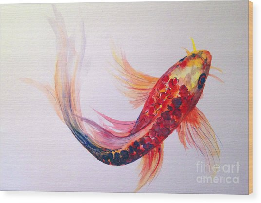 Rainbow Koi Wood Print
