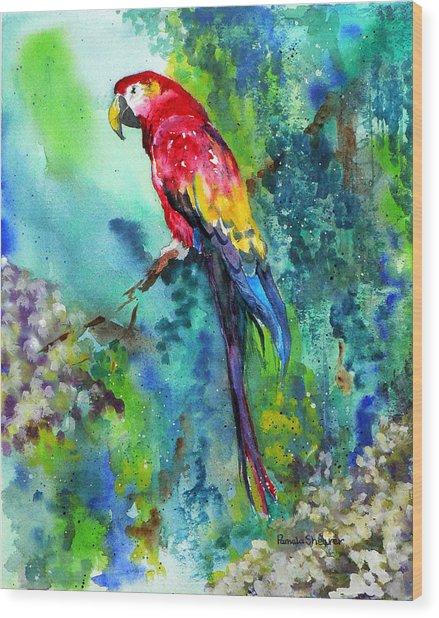 Rainbow On The Fly Wood Print
