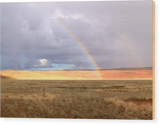Rainbow Over Sossulvei Wood Print