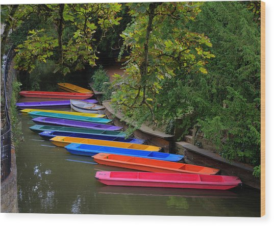 Rainbow River Wood Print
