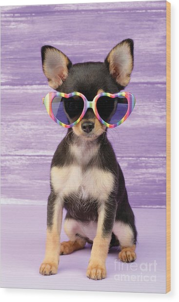 Rainbow Sunglasses Wood Print