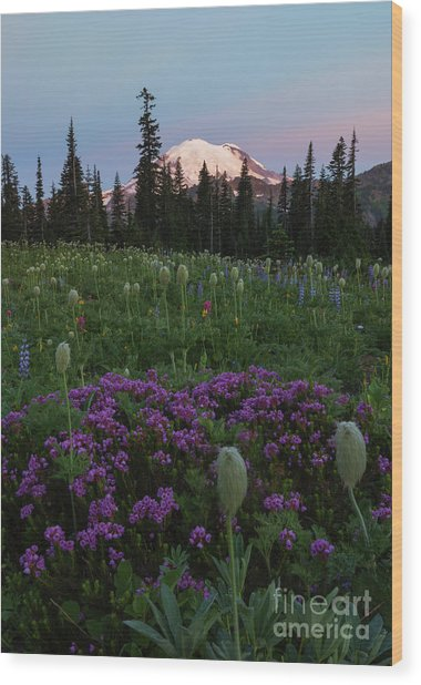 Rainier Pastel Dawn Wood Print