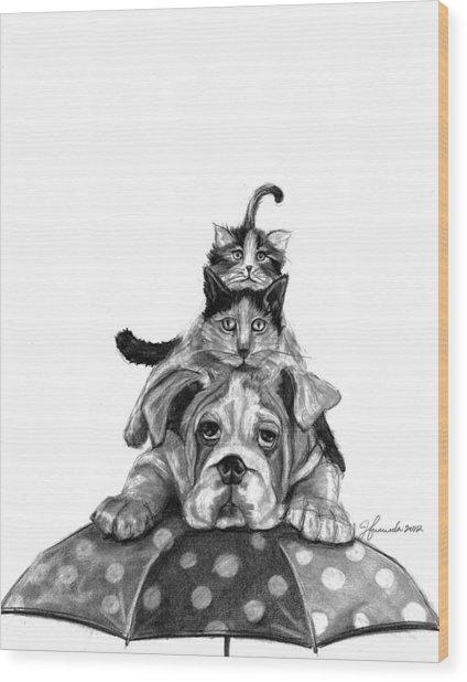 Raining Cats And A Dog Wood Print
