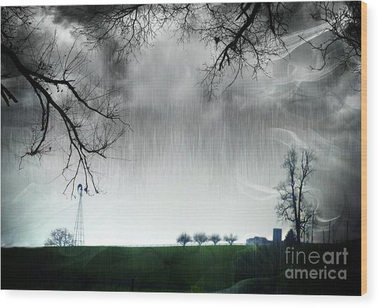 Rainy Day Farm Ver-5 Wood Print