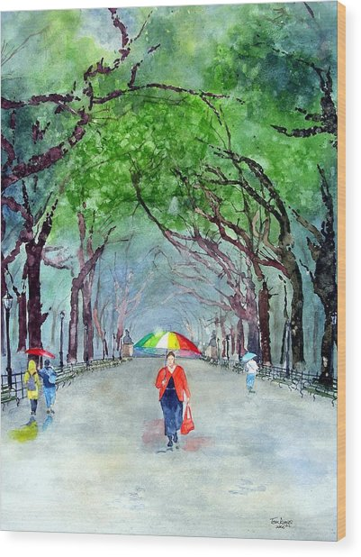 Rainy Day In Central Park Wood Print