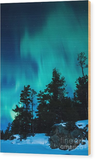 Rainy Lake Lights Wood Print