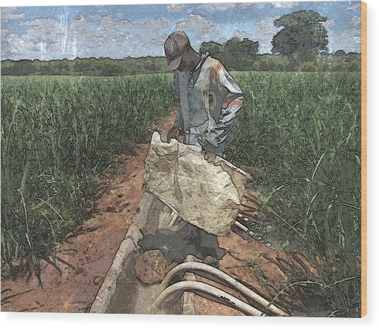 Raising Cane Wood Print