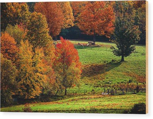 Ramblin' Fall Wood Print