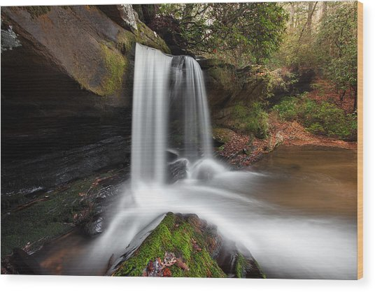 Raper Creek Falls Wood Print by Scott Moore