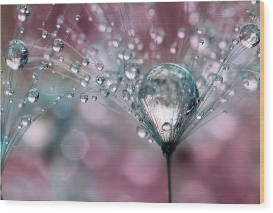 Rasberry Sparkles Wood Print