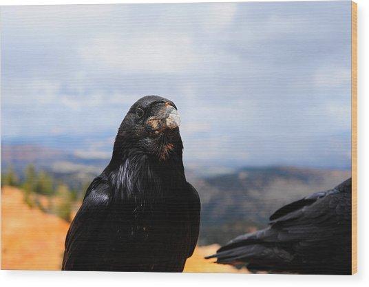 Raven Portrait Wood Print