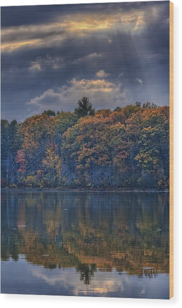 Rayons D'automne Wood Print