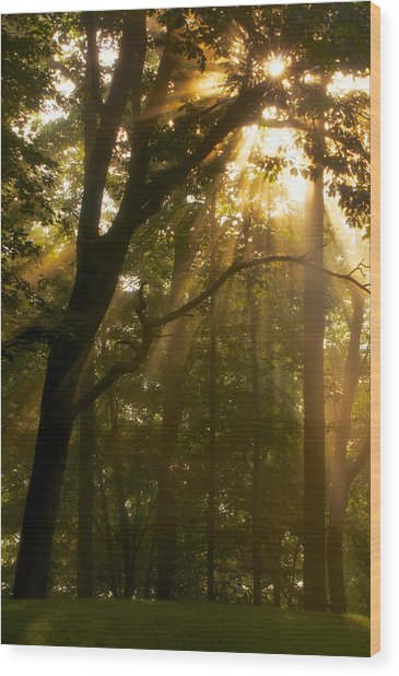 Rays Of Hope Wood Print