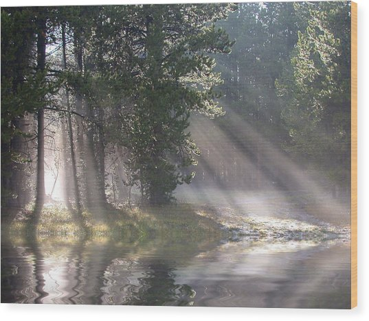 Rays Of Light Wood Print