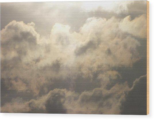 Reach For The Sky 19 Wood Print
