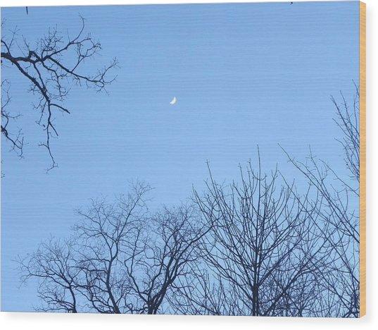 Reaching For The Moon Wood Print by Cim Paddock