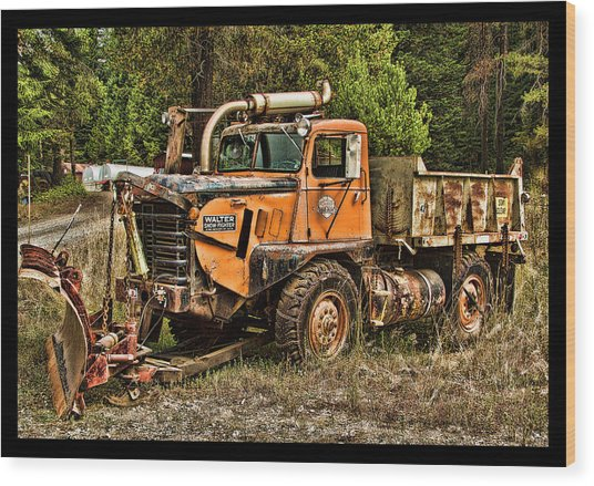 Ready For Snow By Ron Roberts Wood Print