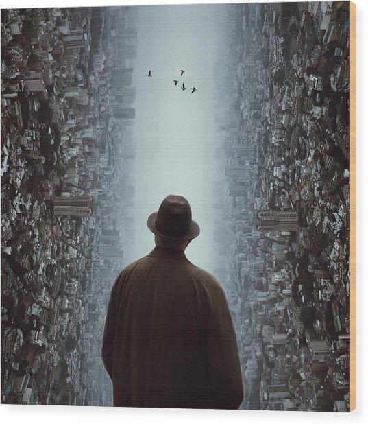 Rear View Of Man Looking At Flying Wood Print by Chen Liu / Eyeem