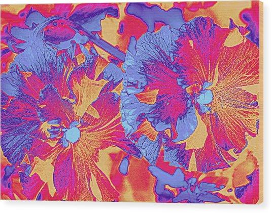 Red And Blue Pansies Pop Art Wood Print