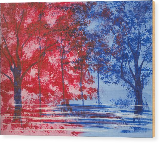 Red And Blue Wood Print