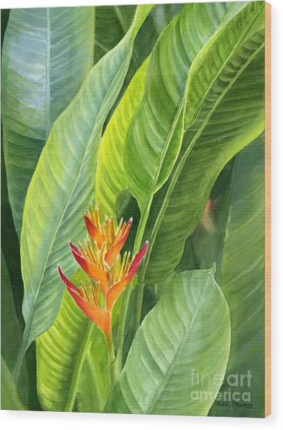 Red And Gold Heliconia Wood Print
