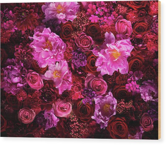 Red And Pink Cut Flowers, Close Up Wood Print