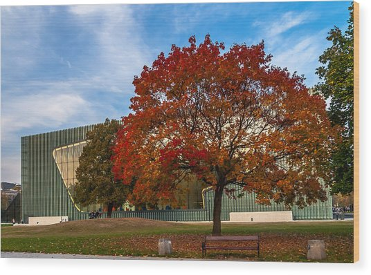 Red And Yellow Tree At The Front Of The Museum Of The History Of Polish Jews In Warsaw Wood Print
