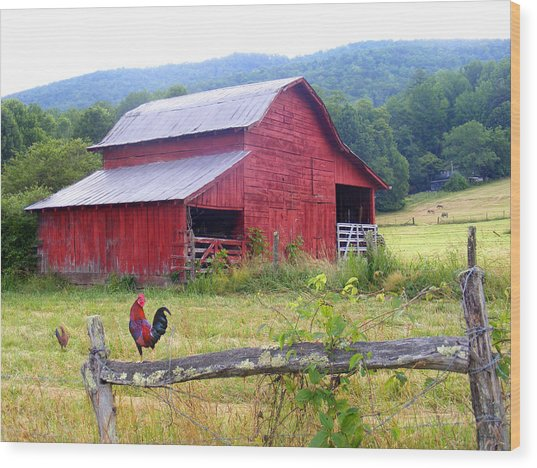 Red Barn And Rooster Wood Print