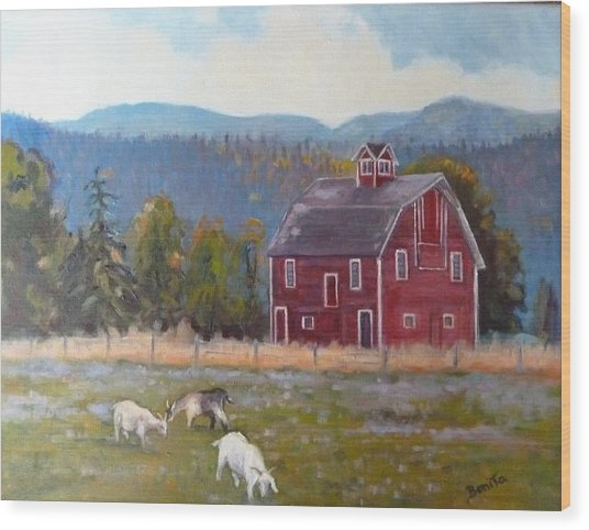 Red Barn In Montana Wood Print