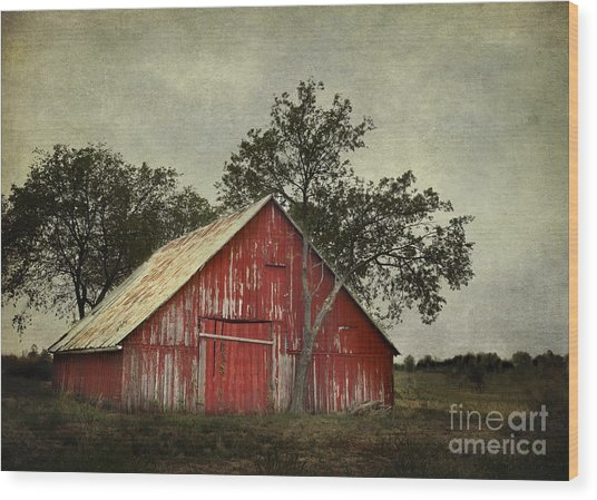 Red Barn With A Tree Wood Print