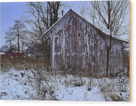 Red Barns In Winter Wood Print