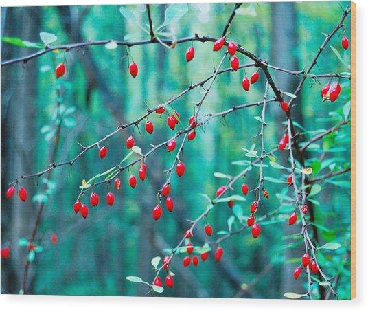 Red Berries In October Wood Print