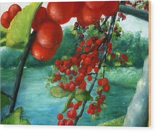 Red Berry Tree On Louisiana Pond Wood Print
