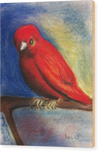 Red Bird Wood Print by Anais DelaVega