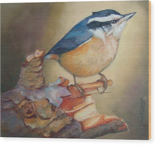 Red-breasted Nuthatch Bird Wood Print