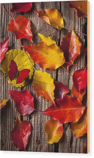 Red Butterfly In Autumn Leaves Wood Print