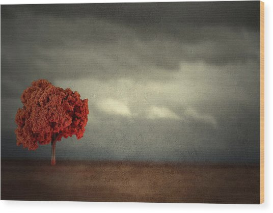 Red Carpet Thunder Wood Print