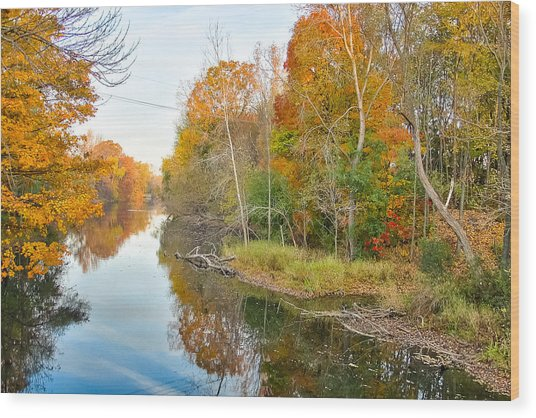Red Cedar Fall Colors Wood Print